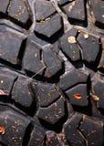 Semelle de pneu Images libres de droits