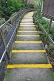 Semen stairs and yellow line. At the park Stock Photography