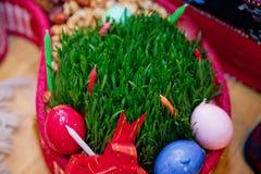 Semeni de los brotes de la hierba del trigo de primavera para la celebración del equinoccio de primavera del día de fiesta de Nov imagen de archivo libre de regalías