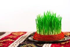 Semeni du plat de vintage, décoré de la corde rouge sur la nappe nationale de style Photographie stock libre de droits