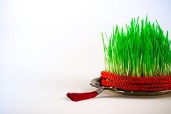 Semeni vert du plat de vintage, décoré du ruban rouge de torsion et du gland rouge Image stock
