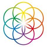 Semente da vida em cores do arco-íris ilustração do vetor
