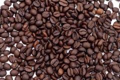 Semente de Cofee Fotografia de Stock