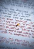 Semente de mostarda e a Bíblia aberta Fotos de Stock Royalty Free