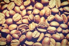 Semente do café imagem de stock