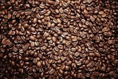 Semente do café imagens de stock