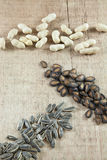 3 sementes Fotos de Stock Royalty Free