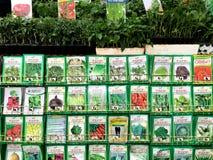 Sementes da jardinagem vegetal no berçário Fotografia de Stock Royalty Free