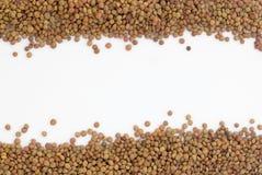 Sementes da lentilha de Brown Imagem de Stock Royalty Free