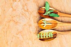 Sementes da manjericão Fotografia de Stock