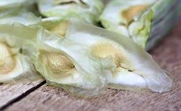 Sementes da moringa oleifera Fotografia de Stock Royalty Free