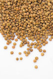 Sementes das lentilhas de Brown Fotografia de Stock