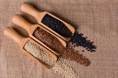 Sementes das lentilhas, do linho e do quinoa na colher de madeira Imagem de Stock Royalty Free