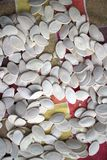 Sementes de abóbora Foto de Stock Royalty Free