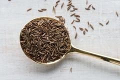 Sementes de alcaravia Fotografia de Stock Royalty Free