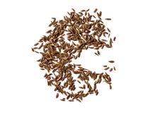 Sementes de alcaravia isoladas no fundo branco Imagem de Stock
