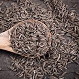 Sementes de cominhos indianas em uma colher Imagens de Stock