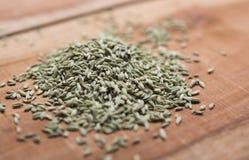 Sementes de erva-doce Imagem de Stock