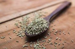 Sementes de erva-doce Fotografia de Stock Royalty Free