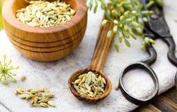 Sementes de erva-doce na colher Fotografia de Stock Royalty Free