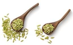 Sementes de erva-doce secadas na colher de madeira, isolada na vista branca, superior fotos de stock royalty free