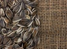 Sementes de girassol em um fundo de madeira Fotografia de Stock Royalty Free