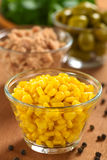 Sementes de milho doce Imagens de Stock Royalty Free