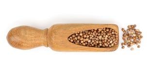 Sementes do cominhos ou de alcaravia na colher de madeira isolada no fundo branco Vista superior imagem de stock royalty free