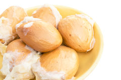 Sementes do Durian isoladas no fundo branco Fotografia de Stock Royalty Free