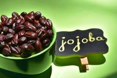 Sementes do Jojoba em uma bacia verde imagens de stock royalty free