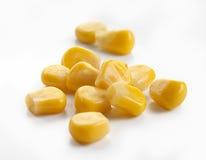 Sementes do milho Imagem de Stock Royalty Free