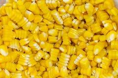Sementes do milho da fervura na bacia fotos de stock