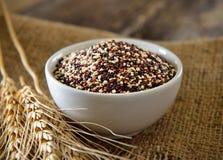 Sementes do Quinoa na bacia na madeira imagem de stock