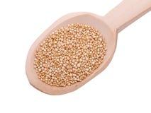 Sementes do Quinoa na colher de madeira Foto de Stock Royalty Free