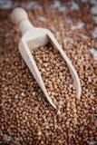 Sementes do trigo mourisco e colher de madeira Fotos de Stock