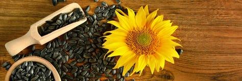 Sementes girassol e flor em um fundo de madeira Foto larga fotos de stock royalty free