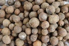 Sementes secas da pimenta da Jamaica Imagens de Stock Royalty Free