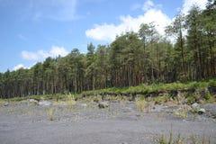 SEMERU-BERG EAST JAVA INDONESIEN arkivbilder