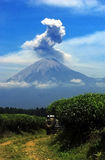 Semeru. Eruptions witnessed from plantations in Lumajang, East Java, Indonesia Royalty Free Stock Photography