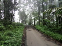 Semeru island Stock Images
