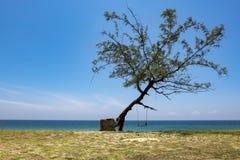 Semester och fredbegrepp Härlig tropisk strand, mjuk våg som slår den sandiga stranden Royaltyfria Bilder