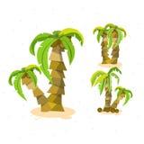 Semesterkokosnötbakgrund - uppsättningen av kokospalmen - Royaltyfri Fotografi