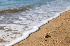 Semestern kopplar av begrepp, havslandskap med skalet och vågor Arkivbild