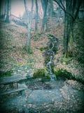 Semesterort i natur Royaltyfria Bilder