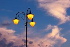 semesterorten för natten för lampan för altay belokurikhahälsa sköt den siberia gatan Arkivfoton