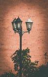 semesterorten för natten för lampan för altay belokurikhahälsa sköt den siberia gatan Fotografering för Bildbyråer