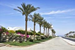 Semesterortområdet av Sharm el Sheikh Arkivfoto