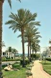 Semesterortområdet av Sharm el Sheikh Arkivbilder