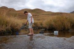 Semesterpojke som fångar krabban på floden Arkivfoto