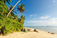 Semestersommar semestrar bakgrundstapeten - soligt tropiskt exotiskt royaltyfri fotografi